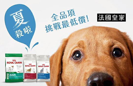august-02.jpg-寵物,寵物用品,寵物飼料,寵物玩具,寵物零食