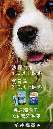 精選熱銷飼料│特惠中-寵物,寵物用品,寵物飼料,寵物玩具,寵物零食