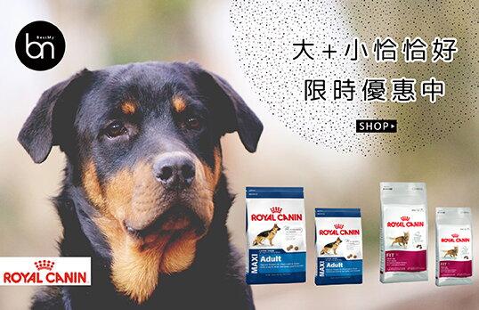 10-01.jpg-寵物,寵物用品,寵物飼料,寵物玩具,寵物零食