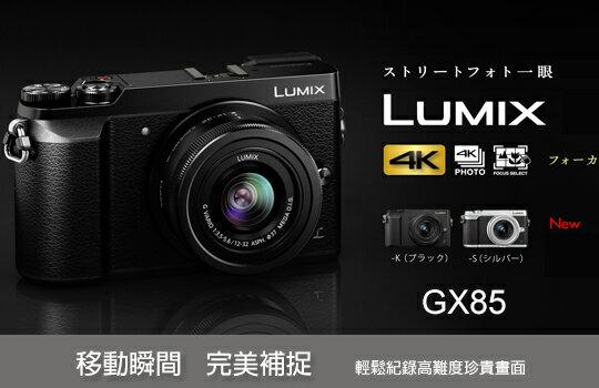 Panasonic 專區-數位相機,單眼相機,拍立得,攝影機,鏡頭