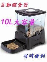 10公升自動餵食器