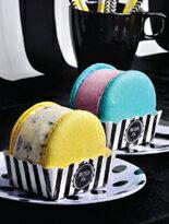 粒粒冰淇淋★超大馬卡龍冰淇淋禮盒六入