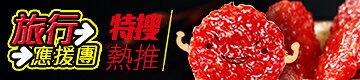彰化水根肉乾 旅行應援團 圓燒豬肉乾+檸檬豬肉絲