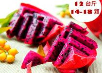 紅肉火龍果 12台斤(14-1-美食甜點,蛋糕甜點,伴手禮,團購美食,網購美食