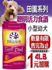 Wellness 小型犬飼料-寵物,寵物用品,寵物飼料,寵物玩具,寵物零食