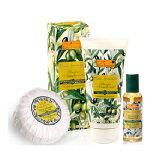 橄欖沐浴超值組-化妝品,保養品,彩妝,專櫃,開架