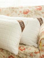潔淨可水洗QQ枕-家具,燈具,裝潢,沙發,居家