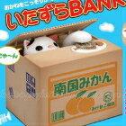 網路購物-偷錢貓咪存錢筒