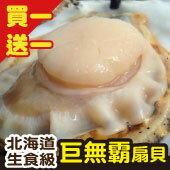 買一「份」送一「份」→北海道生食級巨無霸巴掌扇貝